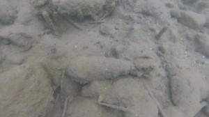 Guarda la versione ingrandita di Roma, allarme a Castelgandolfo: i fondali del lago sono pieni di bombe