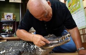 Giappone, vive da 34 anni con un caimano in casa