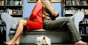 Separazione, al cane stessi diritti di un figlio: affido congiunto