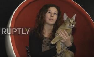 Demo More, il gatto più caro del mondo