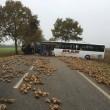 Francia, scontro tra bus scuola e camion a Bavincourt: un morto FOTO 3