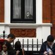 Assange interrogato da pm Svezia in ambasciata: la vera star è il gatto in cravatta