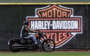"""Padova: appelli sul web, ladri """"restituiscono"""" Harley rubata"""