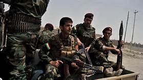 Combattenti kurdi