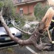 Tromba d'aria nel Lazio: due morti a Ladispoli