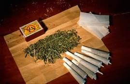 ''Spinelli'' di marijuana