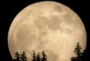 Super Luna più grande degli ultimi 68 anni: occhi al cielo il 14 novembre