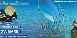 Guarda la versione ingrandita di Top One Diving Club sbarca alla piscina Ferratella, a Roma Eur
