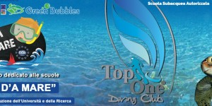 Top One Diving Club sbarca alla piscina Ferratella, a Roma Eur