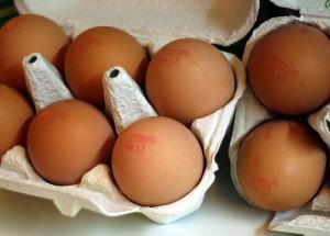 Uova, una al giorno riduce il rischio di ictus del 12%