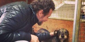 Cortona, Jovanotti regala 15 quintali crocchette al canile