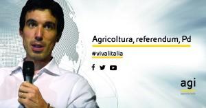 Maurizio Martina a Viva l'Italia di Agi: diretta streaming VIDEO