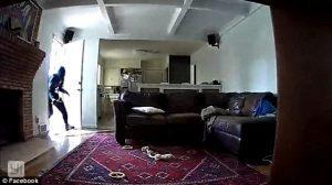 Rompe videosorveglianza ed entra in casa polizia lo arresta 4
