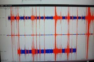 Terremoto Giappone, scossa magnitudo 6 a est di Tokyo