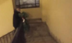 Fabrizio Corona, rose rosse a Silvia Provvedi dal carcere VIDEO
