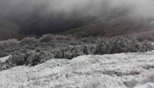 Inverno stagione killer: più infarti, ictus e sos malattie infettive