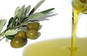 Olio d'oliva, come riconoscere se è di quello buono
