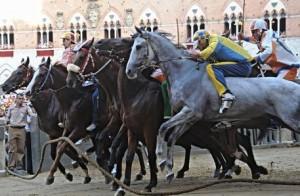 Siena, Massimo Columbu dà unghiata al fantino rivale: farà servizi sociali