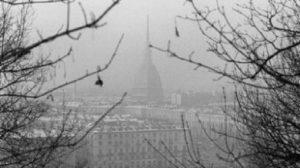 Torino, allerta smog: mutazioni del Dna per un bambino su due