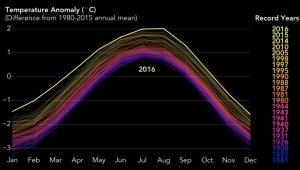 Cambiamento climatico, mai così male. Ecco quanto sono aumentate le temperature