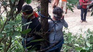 Legata a un albero, morta per i morsi delle formiche guerriere, giustizia stile Beppe Grillo in Bolivia