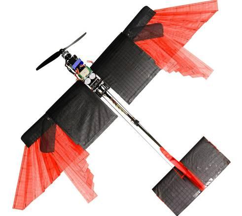 Drone che vola e atterra come un uccello4
