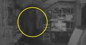 """YOUTUBE """"Fantasma di Elisabetta I Tudor"""": misterioso video dal Regno Unito"""