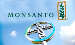 Bayer comprerà Monsanto per 66 miliardi di dollari cash