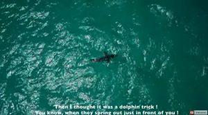YOUTUBE Isabelle Fabre, la blogger fa kitesurf e incontra...lo squalo