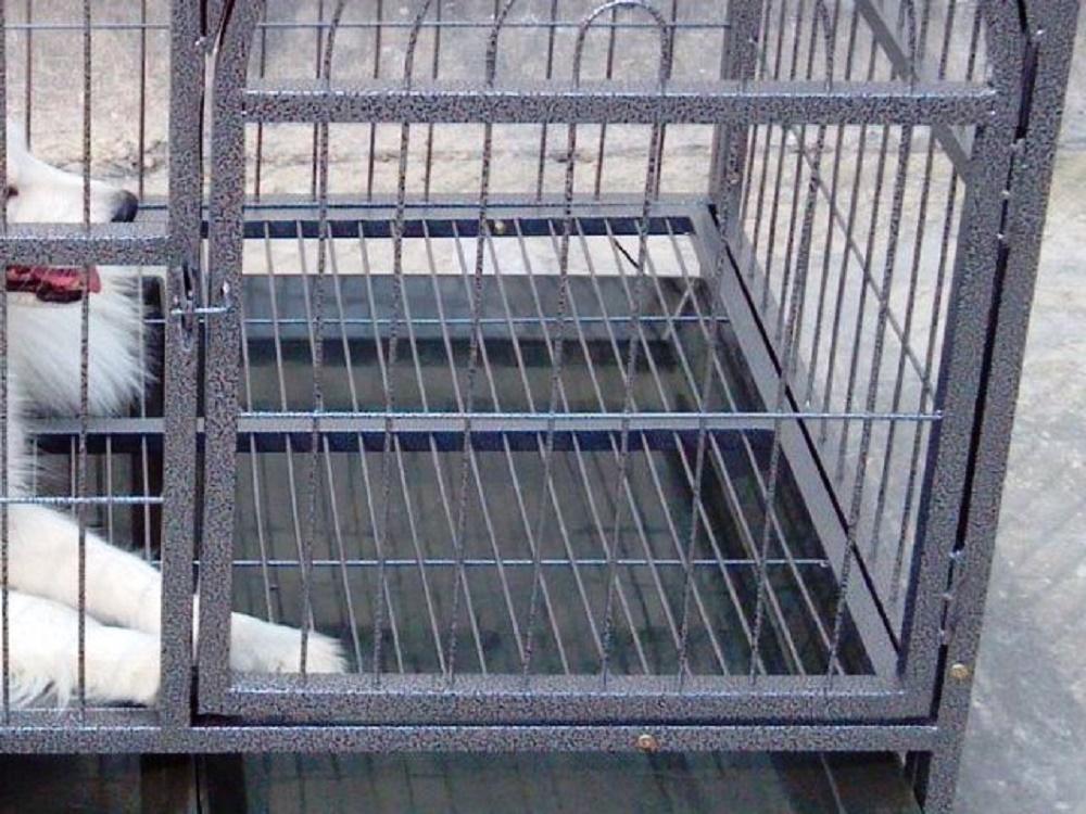 Rinchiude la compagna nella gabbia del cane, la picchia e la stupra