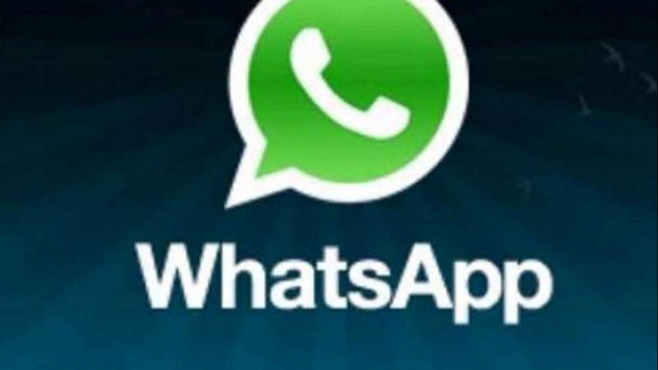 live whatsapp