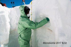 Microbi del Sahara sulle Alpi dolomitiche: le nuove migrazioni causate dal clima
