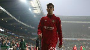 Kai Havertz, il giovane talento del Bayer salta l'Atletico per un esame a scuola