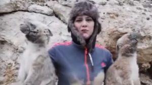 YOUTUBE Cattura cuccioli di iena e pubblica VIDEO su Fb. Bufera sulla giornalista-cacciatrice