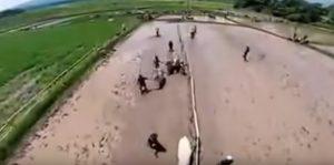 Pacu Jawi, la corsa delle vacche tra il fango in Indonesia