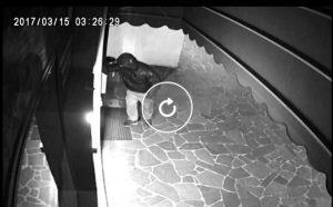Udine, martellano la porta e rubano un cambiamonete: la fuga dei ladri VIDEO