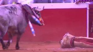 Torero Antonio Romero colpito alla schiena