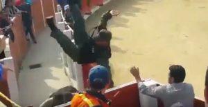 Toro scavalca recinzione e incorna poliziotto