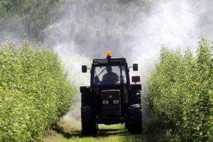 Bardineto, operaio morì in aziend agricola: fratelli Oddone condannati e arrestati