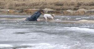 Si tuffa nel lago ghiacciato e salva il suo cane