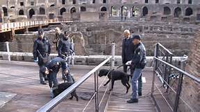 Cani anti-esplosivo