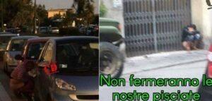Genova, la guerra della pipì: le foto di chi la fa strada finiscono sul web