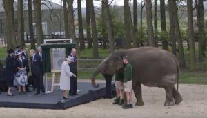 La regina Elisabetta dà da mangiare all'elefante