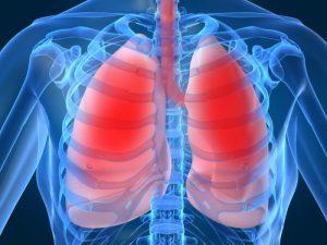 Fibrosi cistica, da un estratto del timo nuove possibilità di cura: la nuova scoperta