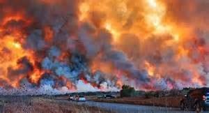 Gli incendi in Florida