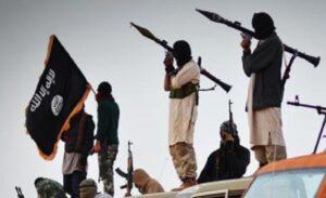 Isis, tre miliziani uccisi da un branco di cinghiali selvatici