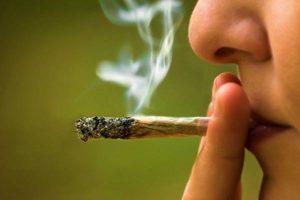 """Arrestato per spaccio, il gip lo assolve: """"Uso marijuana per la follicolite"""""""