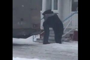 YOUTUBE Uomo fa wrestling con un orso, poi prova a cavalcarlo...