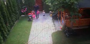 Cane randagio attacca figlia di due anni: papà reagisce così