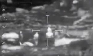 Pastori hanno un rapporto con la pecora: VIDEO ripreso dal drone